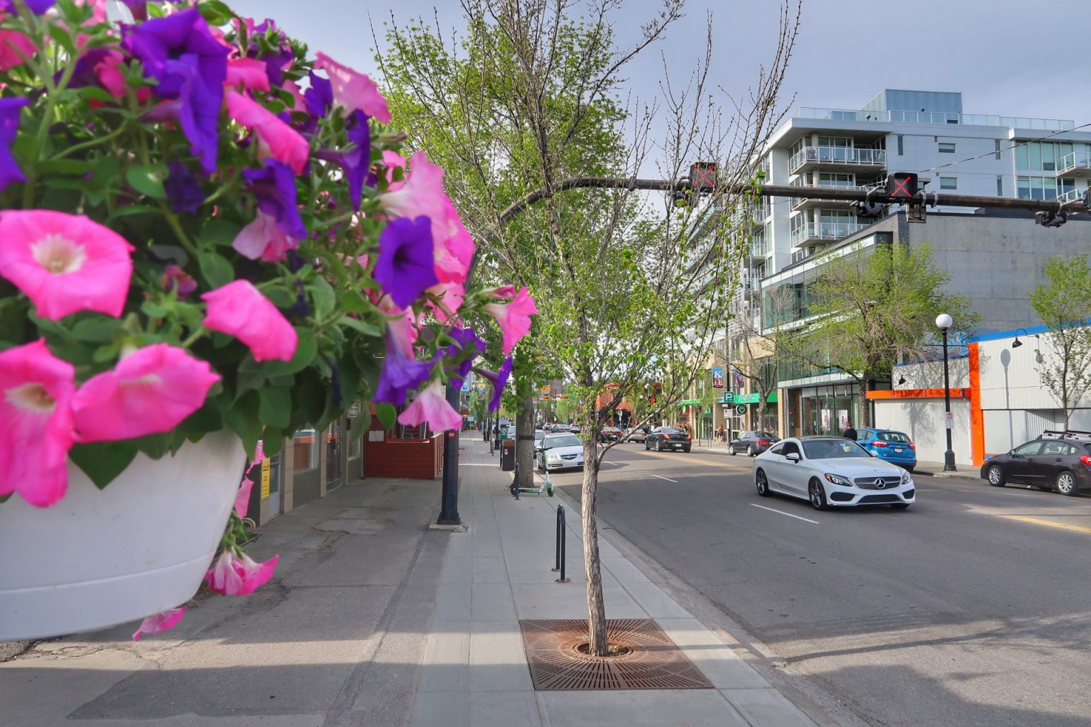 Kensington, Calgary: 7 things You Must Know Before You Buy Real Estate Here
